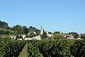 Vue du bourg de Saint-Michel de Fronsac depuis les vignes.jpg