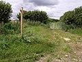 Walk Lane - geograph.org.uk - 492928.jpg