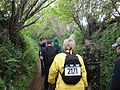 Walk the Wight 2010 at Arreton.jpg