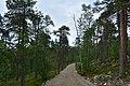 Walking trail, Inari, Finland (16) (36287993690).jpg