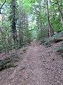 Wanderweg zur Wegelnburg 05.jpg