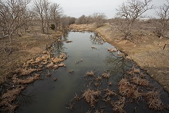 Washita River - Upper Washita River in Hemphill County, Texas