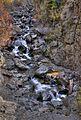 Waterfall (4006655647).jpg