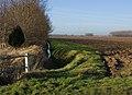 West of Black Tup Lane, Arnold - geograph.org.uk - 1129385.jpg