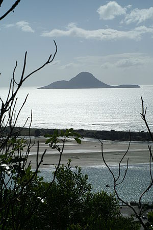 Moutohora Island - Whale Island from the Kohi Point Walkway close to Whakatane.