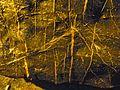 WikiProjekt Landstreicher Sturmannshöhle 04.jpg
