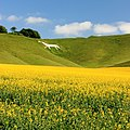 Wiltshire White Horse - panoramio (4).jpg
