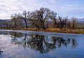 Winter on Carson River (19790784890).jpg