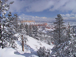 Winter storm at Bryce Canyon National Park.