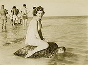 Woman riding turtle at Mon Repos