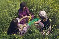 Women in Kurdi clothes ILAM-Iran 02.jpg