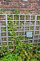 Wordsworth House 2015 67.jpg