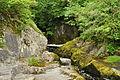 Yew Tree Gorge (7523).jpg