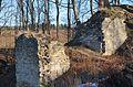 Zbytky hradu Výrova - panoramio.jpg