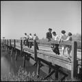 """San Joaquin Valley, California - Contract Labor - This scene is near the camp of a labor contractor"" - NARA - 532158.tif"