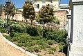 ® MADRID VERDE JARDIN SAN FRANCISCO EL GRANDE - panoramio - Concepcion AMAT ORTA… (20).jpg