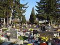 Čakovečko groblje; Svi sveti - grobovi pod borovima.jpg