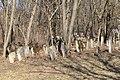 Єврейське кладовище Жабокрич5.jpg
