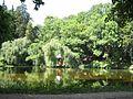 Ірина Кізім 16 червня 2008 ставок.jpg