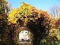 Ботанический сад Российской академии наук, осень 2008 г. (Виноградная арка, выход на ул.Профессора Попова).jpg