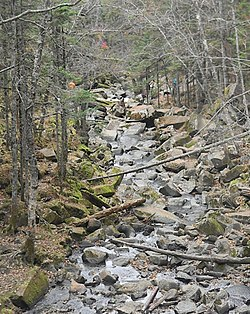 Водопад приток р.Тигровая.jpg