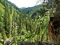 Горный Алтай - panoramio (11).jpg