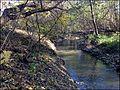 Измайловский парк - panoramio (7).jpg