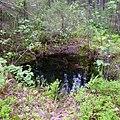 Маленькое озеро - panoramio (2).jpg
