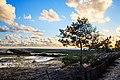 Национальный парк Куршская коса 4.jpg