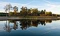 Озеро серед лісу.jpg