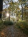 Парк відпочинку (старий парк над Стоходом), осінню 02.JPG