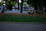 Парк имени Горького в Москве. Фото 34.jpg