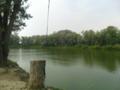 Река домашняя с. Осьмерыжск.png