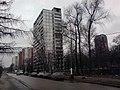 Селигерская улица - panoramio (1).jpg