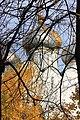 Смоленский собор, купола.jpg