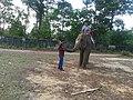ডুলাহাজারা সাফারি পার্কের হাতির পিঠে চড়া.jpg