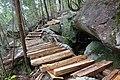 南木曽岳の木道・木段.jpg