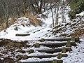 吉野山上千本にて 2013.2.17 - panoramio (1).jpg