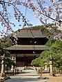 向嶽寺と枝垂れ桜 Kougakuji Temple - panoramio.jpg