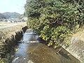 川 - panoramio (1).jpg