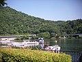 神奈川県立相模湖公園 - panoramio (8).jpg