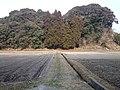 蓬原城跡 - panoramio.jpg