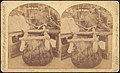 -Group of 18 Stereograph Views of the 1884-1885 New Orleans Centennial International Exhibition- MET DP75672.jpg