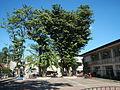 01216jfWelcome Chapel Market Roads Talavera Ecijafvf 41.JPG