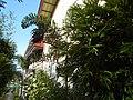 07095jfSan Isidro Labrador Church Muzon Grotto Our Lady La Sallete San Jose del Monte Cityfvf 19.jpg