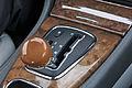 11-08-21-jaguar-im-regen-by-RalfR-22.jpg