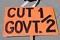 115.HealthCareReformProtests.SupremeCourt.WDC.27March2012 (8273179353).jpg