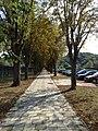 15.08.2013. Krapinske Toplice, Kroatien - panoramio (4).jpg