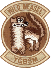 190th Fighter Squadron Wild Weasel patch