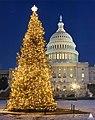 1989 U.S. Capitol Christmas Tree (31432739050).jpg
